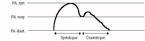 rôle svo2 et état de choc